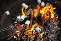 What could be smore fun than roasting marshmallows on a camping trip in Mt. Hood Territory?